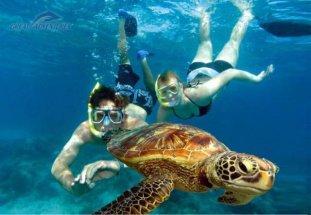 https://bilbytravel.ru/wp-content/uploads/2017/06/snorkel-couple-turtle-wpcf_311x215.jpg