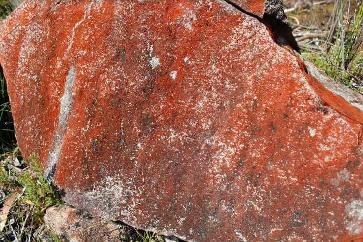 Вулф Крик – парк на месте падения метеорита