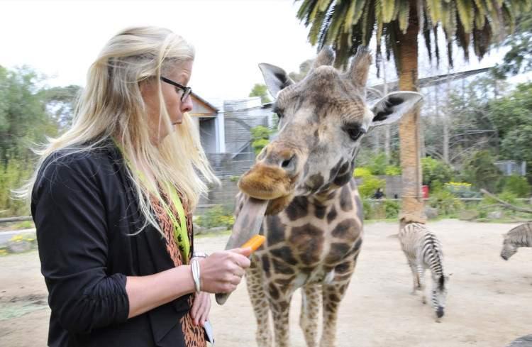 Зоопарки Австралии